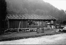 loka1974